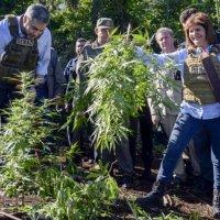 """Patricia Bullrich dijo que """"Hay muchas muertes por el cannabis"""""""